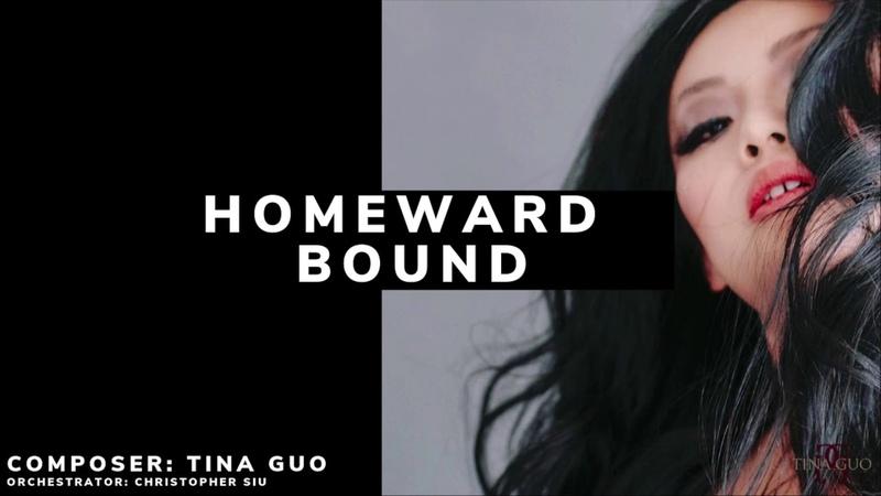 Tina Guo - Homeward Bound (Original Composition)