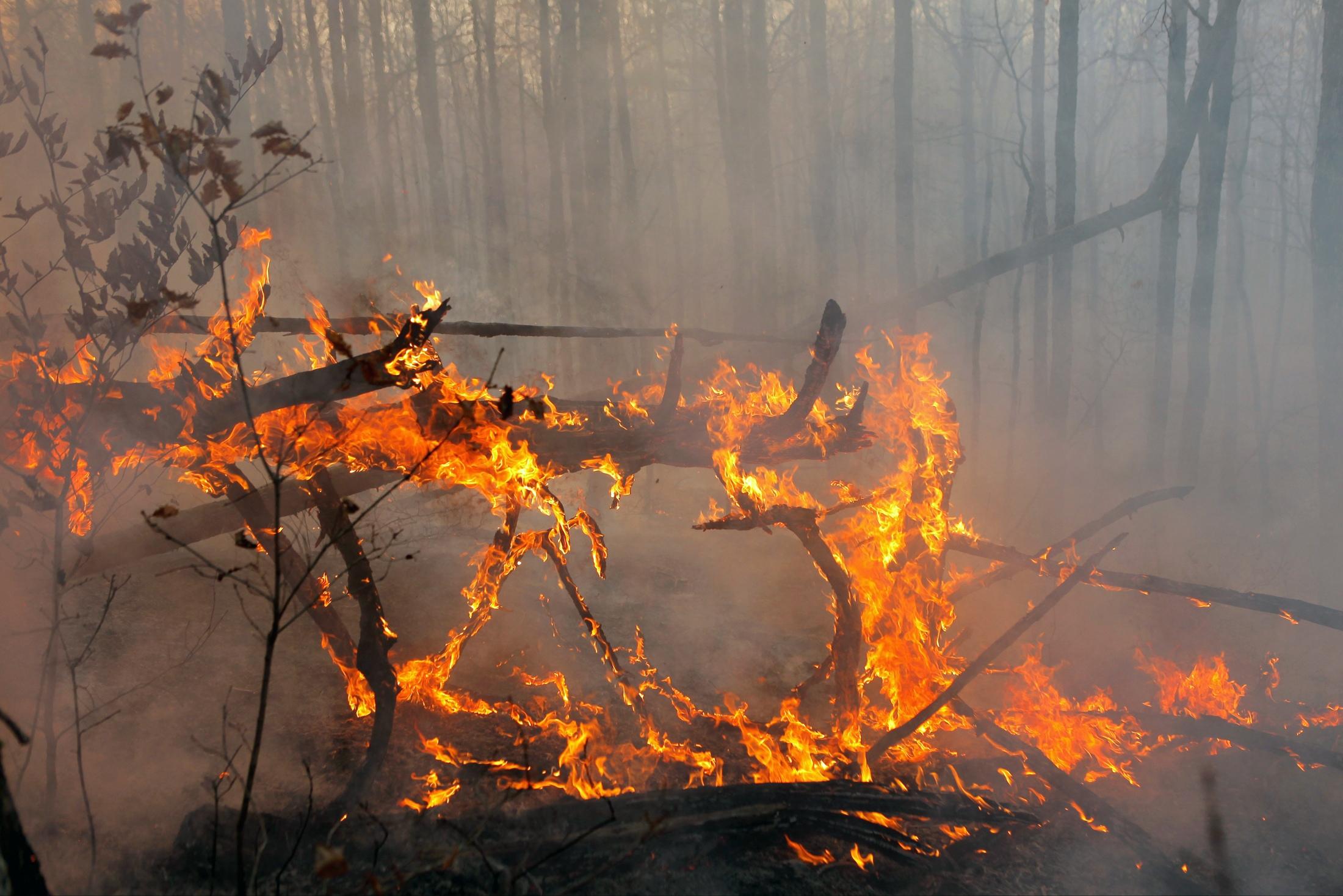 В КЧР ликвидировали лесные возгорания