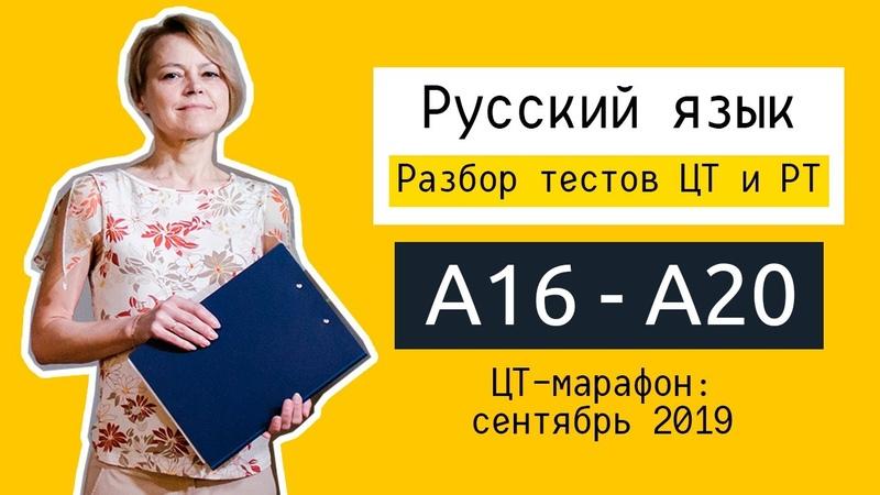 Разбор ЦТ и РТ по русскому языку А16 А20