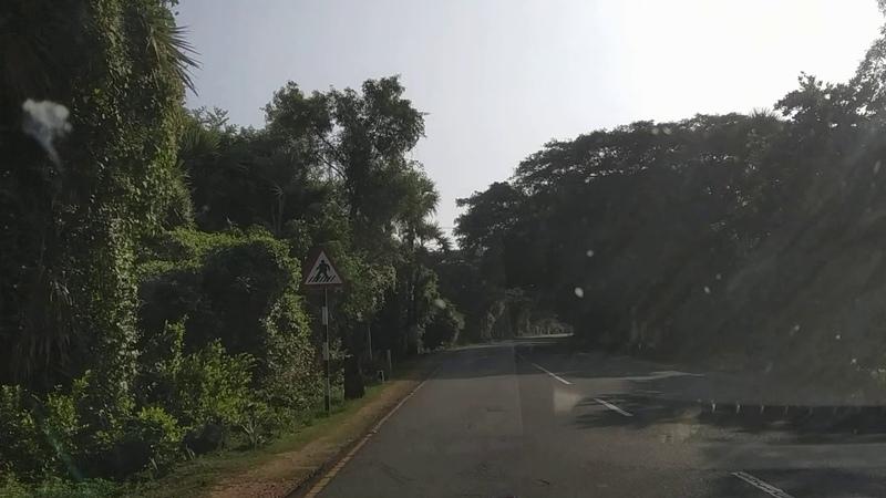 Необыкновенно красивая дорога. Индия. Путешествие с Марией Карпинской.
