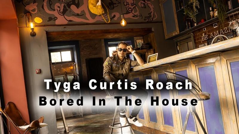 Tyga Curtis Roach Bored In The House Эффект Размножения