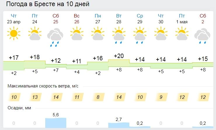 Дождались? Осадки ожидаются в Беларуси в выходные. До +20°С будет в Беларуси 24 апреля