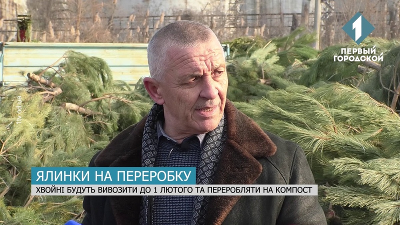 В Одесі прибирають залишені ялинки