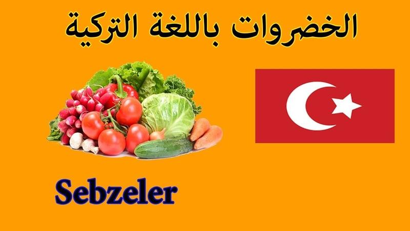 تعلم اسماء الخضروات و نطقها باللغة التركي 15