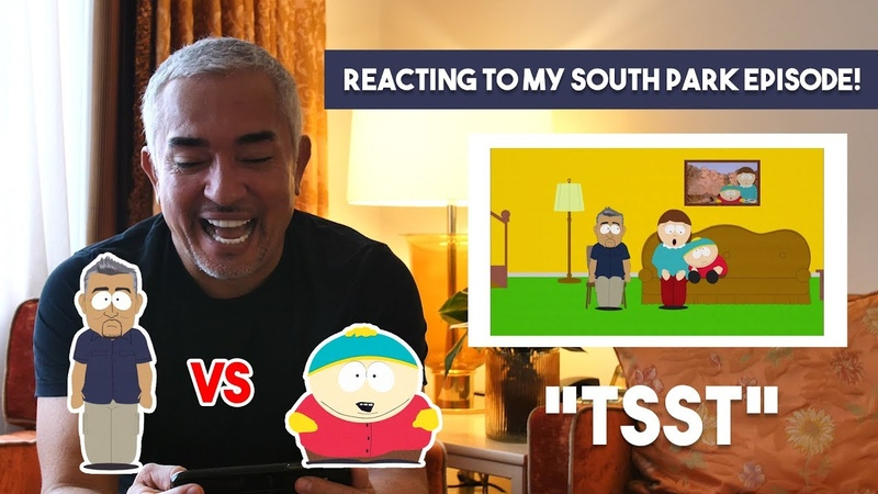 Reacting To My South Park Episode!