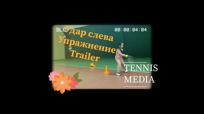Теннис Большой теннис Удар слева