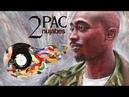 2Pac Nujabes | Metaphorical Shakur EP (Full Album)