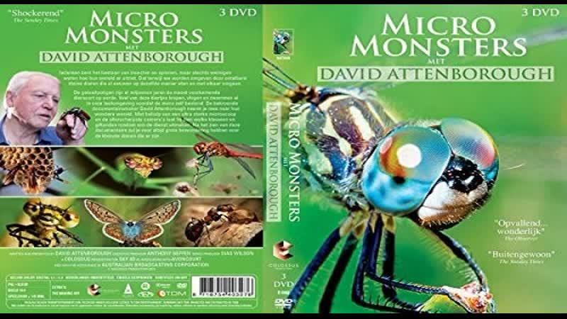 Микромонстры 3D с Дэвидом Аттенборо (6 серий) / Micro Monsters 3D (2013) HD 720р. Перевод: ДиоНиК