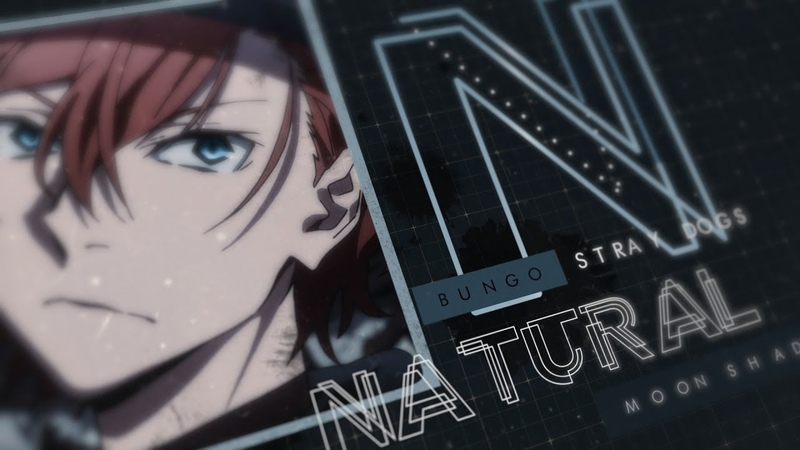 Bungo Stray Dogs | Natural [50K]