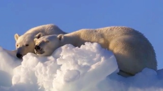 Frozen Seas: 10 Hours of Relaxing Oceanscapes | BBC Earth