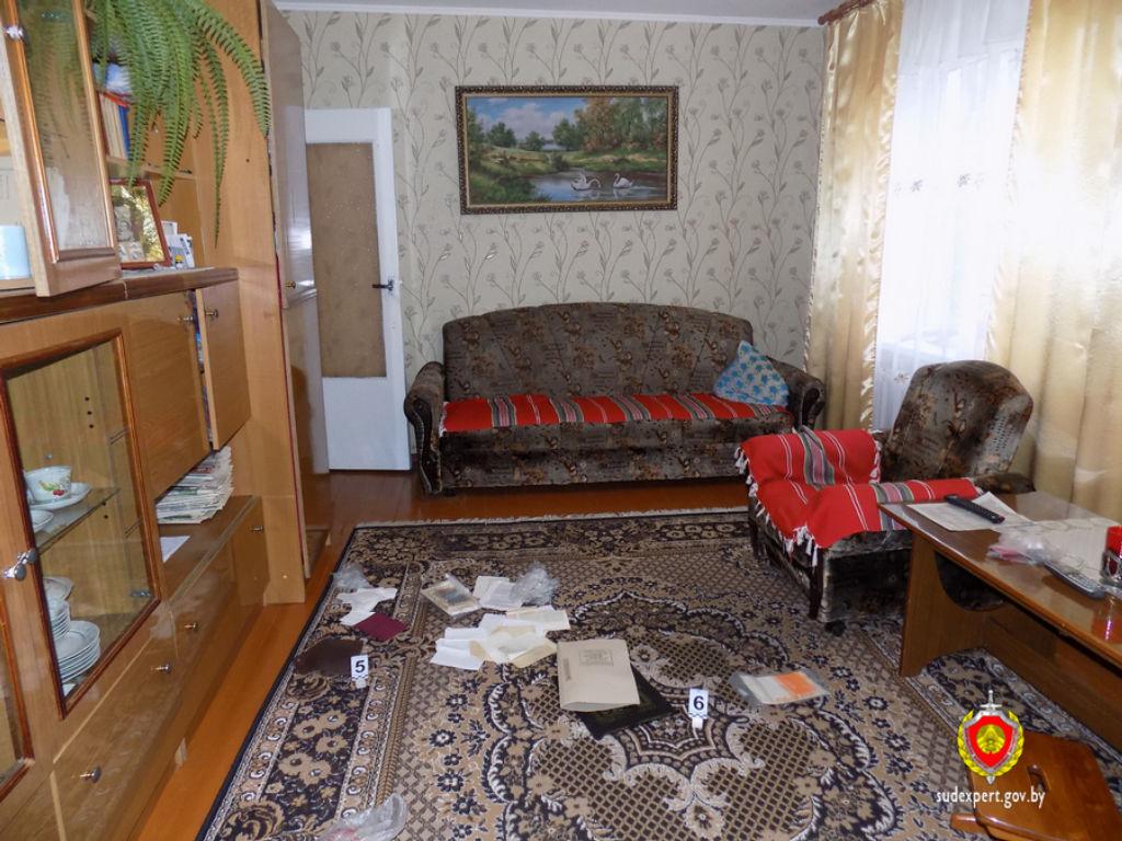 В Минске задержан криминальный дуэт воров-домушников из Пинска