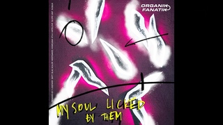 Organik Fanatik - Lick My Soul (joeFarr Remix) [FANA4]