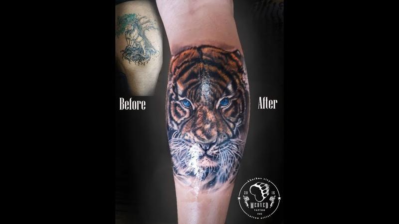Тату тигра (перекрытие ) Cover Tattoo