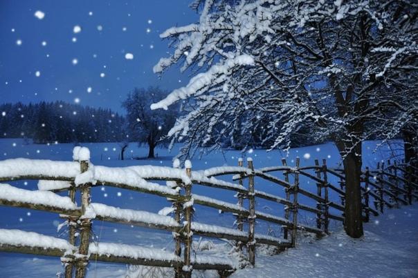 Книга снегопада