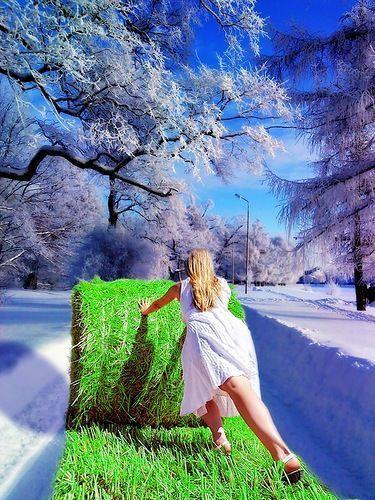 ваши когда у нас лето где зима фото этот сказочный сюжет