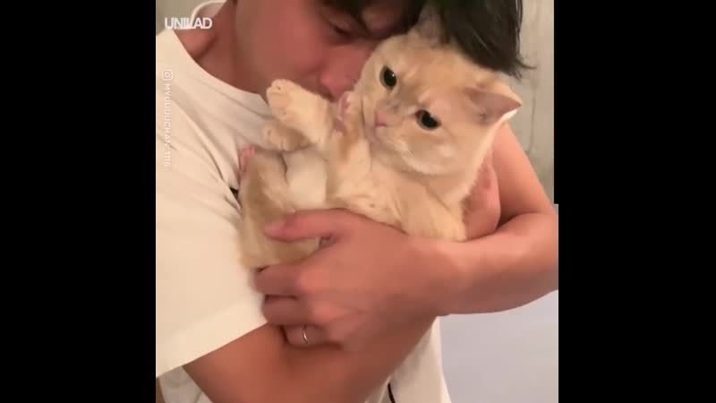 котейка не хочет целоваться