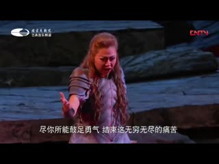 Wagner-gotterdammerung act i + act ii (subtitles in chinese)