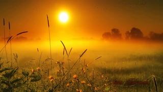 """Замечательные стихи  РОДНЫЕ ДУШИ, написаны П. Давыдовым,   музыка - """"Мелодия влюбленных"""", читаю Я."""