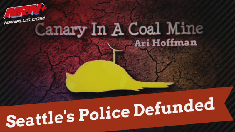 Seattle's Police Defunded Canary in a Coal Mine S1 Ep33 NRN