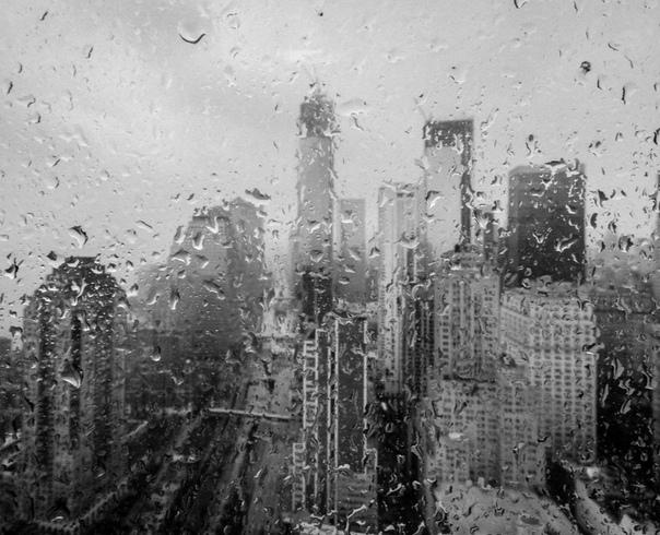 Совещание Утро понедельника выдалось пасмурным и хмурым. На город лил дождь, делавший и без того серый мегаполис совсем уж унылым и безрадостным. На шестидесятом этаже небоскрёба-иглы,