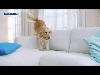 Преимущества пылесоса Samsung с турбиной Anti-Tangle