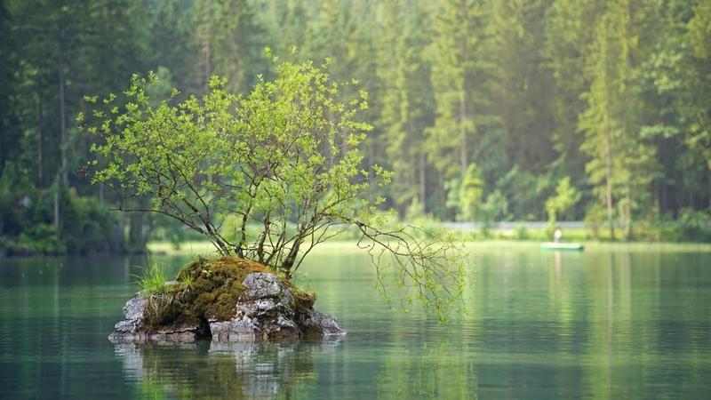 3 часа Мирное озеро Красивая музыка для отдыха и релаксации