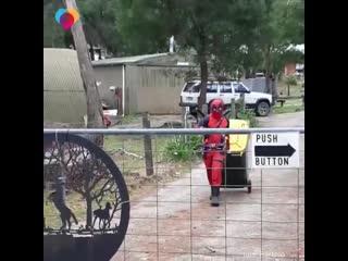 Когда любая вылазка на улицу во время пандемии коронавируса, даже просто вынос мусора, — большой праздник))!