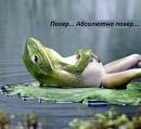 Фотоальбом Viktoriya Kochubey