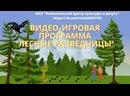 ВИДЕО-ИГРОВАЯ ПРОГРАММА Лесные разведчицы