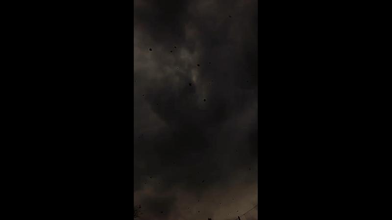 Видео от Сертолово NEWS