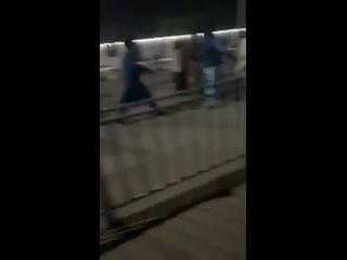 Video by Обитель Диванных Моджахедов