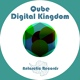 Qube - Feel the Beat