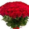 Розы Цветы Минск