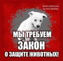 Фотоальбом Валентины Худорожковой