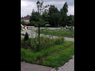 Природа Парка героев 1812 года