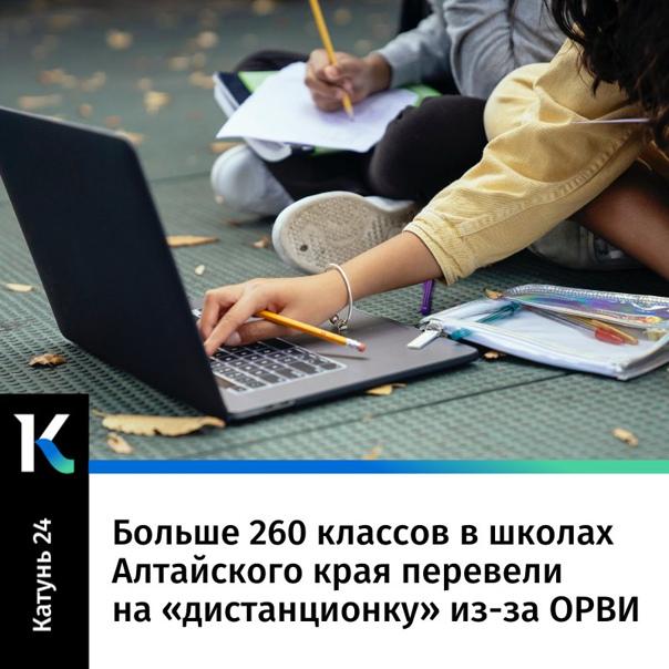 Больше 260 классов в школах Алтайского края переве...