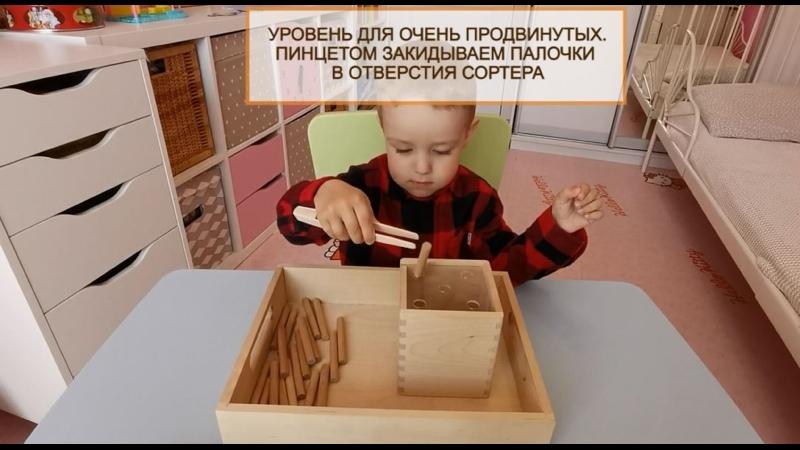 Пинцетом опускает палочки в коробочку Nicolya