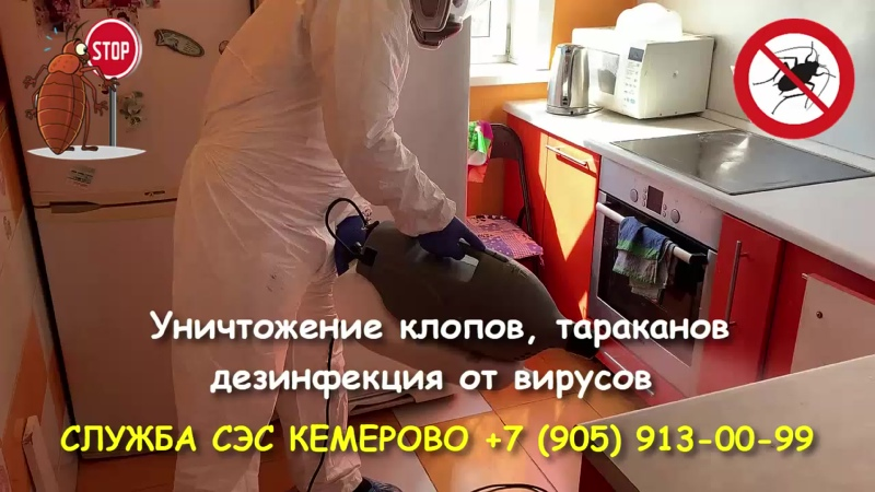 Дез.служба СЭС Кемерово. Уничтожение клопов, тараканов