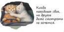 Фотоальбом Светланы Мельник