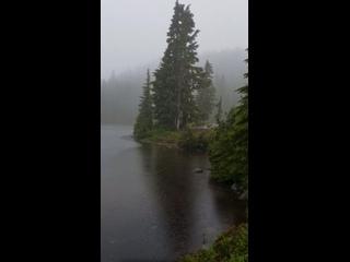 дождь стучит по воде лесного озера
