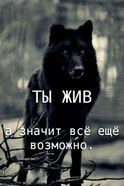Бека, 23, Cherepovets
