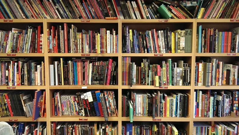 365 дней — 365 книг