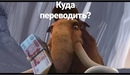 Филин Даня | Калуга | 37