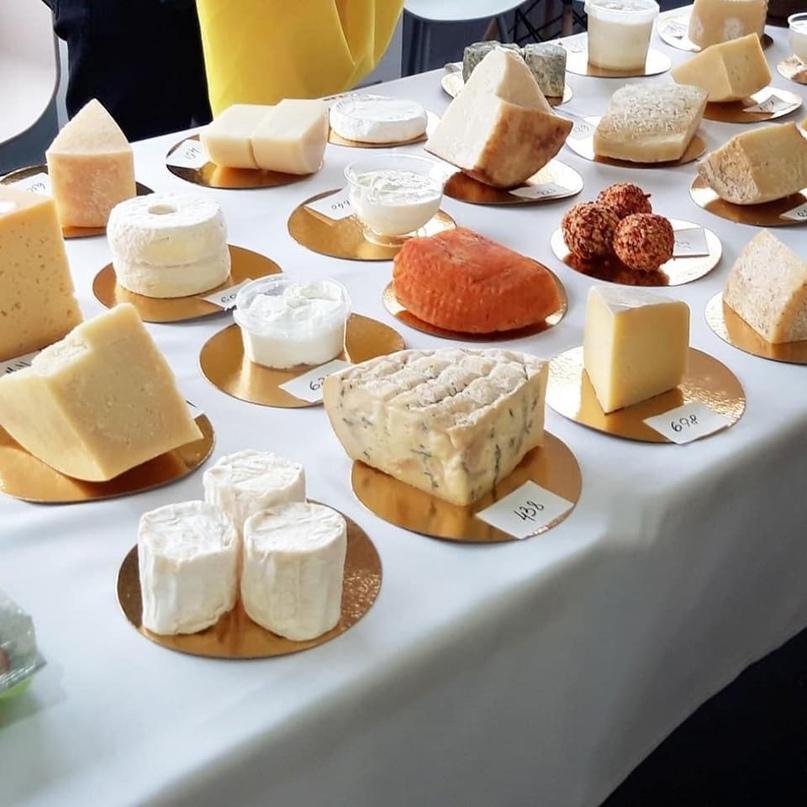 Энгельсские «Честные сыры» вошли в число лучших сыров России