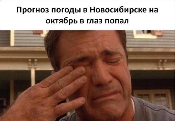 В Новосибирске в октябре 2021 года будет лишь неск...