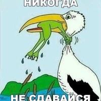 Наталья Самарина