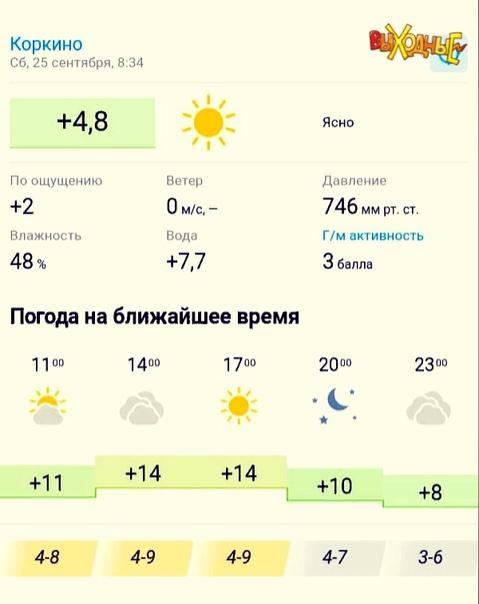 🌤ПРОГНОЗ ПОГОДЫ в Коркино 25 сентября. Геомагнитно...