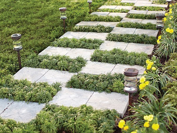 сад и огород садовод вконтакте