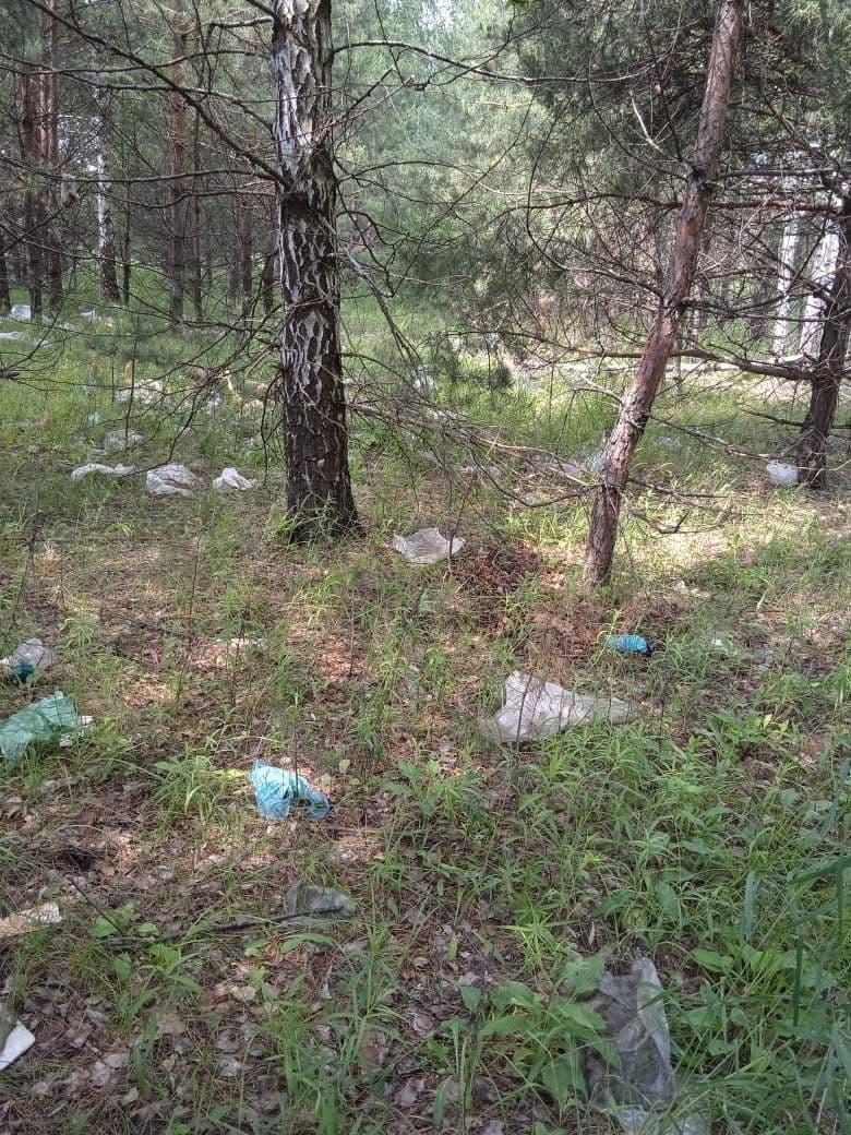 Жителей Рассказовского района заваливает мусором с местного полигона