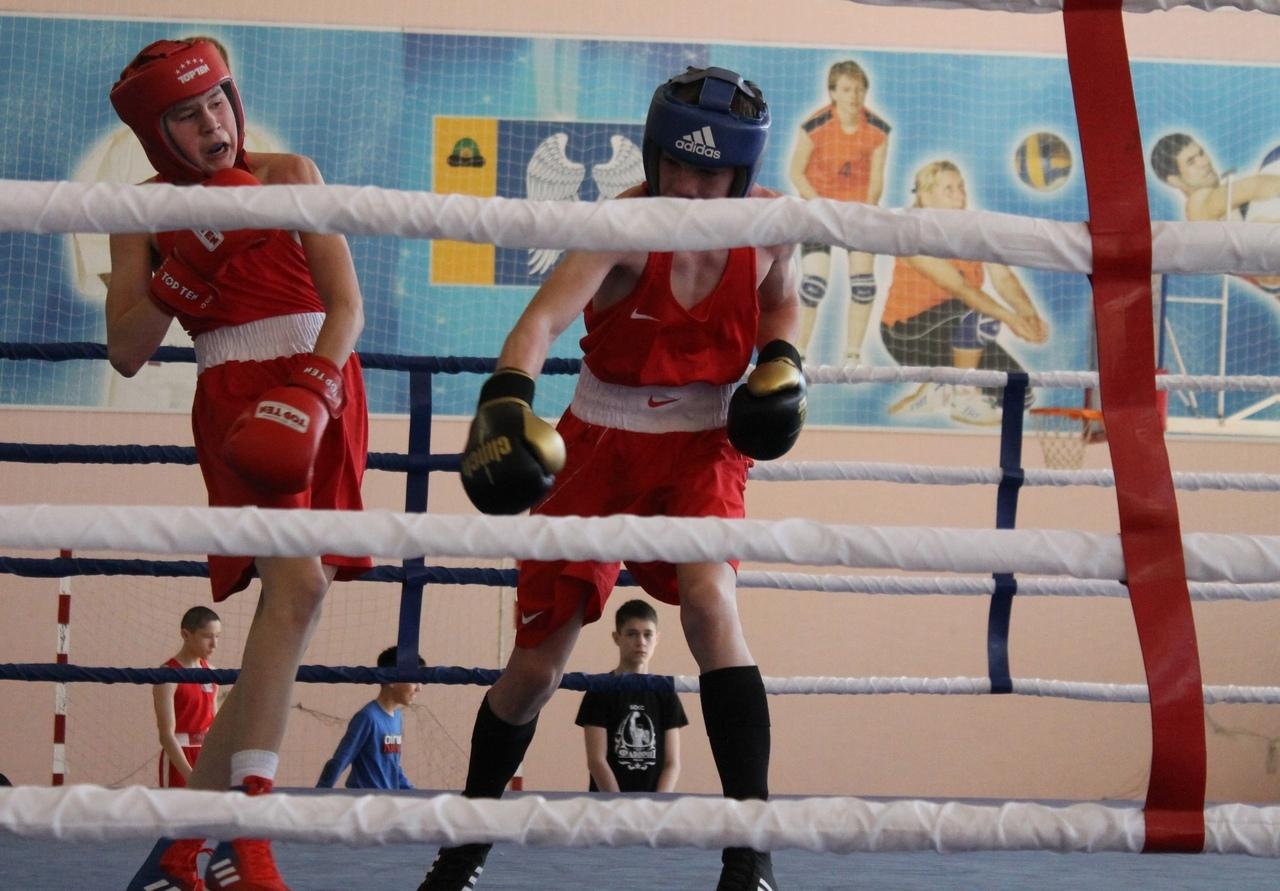 бокс 3